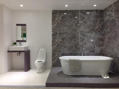 Elegant Ecofriendly Toilet  Houzz